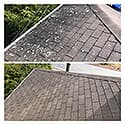 Roof cleaning  24
